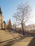 Sunlight and Christmas tree in Moscow Royalty Free Stock Images