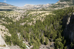 Sunlight Creek Gorge. Along the Chief Joseph Scenic Byway in Wyoming Royalty Free Stock Images