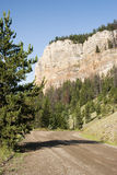 Sunlight Creek Road. View along the Sunlight Creek road in Wyoming Royalty Free Stock Photography
