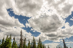 Sunlight in Cumulus Clouds Royalty Free Stock Images