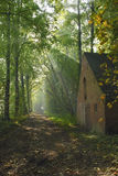 Old house beside a forest path illuminated by the sun. Early morning walk giving this beautiful scenery with light rays shining through the forest roof royalty free stock photo