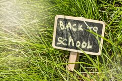 Sunlight falls on the green grass and the black Board with the inscription Back to school. The concept of education, training,. Teacher`s Day royalty free stock photography