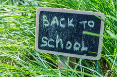 Sunlight falls on the green grass and the black Board with the inscription Back to school. The concept of education, training, stock photography