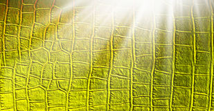 Sunlight in gold leather texture Stock Photo