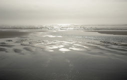 Sunlight and haze at shoreline. Of Long Beach peninsula during the low tide Stock Photos