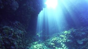 Sunlight Illuminates a Underwater Cave stock video
