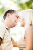 Sunlight kiss Stock Images