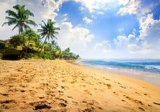 Sunlight over beach Stock Image