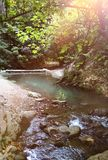 Sunlight over tranquil stream. Shallow stream flowing through green forest scenery, sunlight rays above stock photo