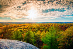 Sunlight Over the Treetops in an Autumn Forest Royalty Free Stock Photography