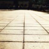 Sunlight on paved cobblestone pavement Stock Image