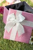 Sunlight on pink gift box Royalty Free Stock Images