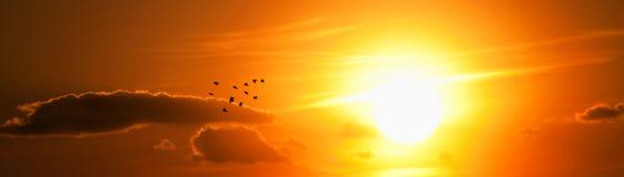 Sunlight Royalty Free Stock Photos