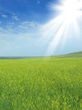 Sunlight rural landscape. With blue sky Stock Photo