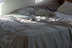 Sunlight`s early morning rise stock image