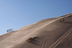 Sunlight on a sand dune in desert Royalty Free Stock Photos