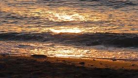 Sunlight on Seaside Waves stock video footage