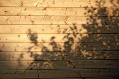 Sunlight and shadow on a wooden wall Royalty Free Stock Photo