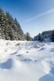 Sunlight and shadows on a snowy landscape. Shadows on the ground in a snowy forest royalty free stock photo