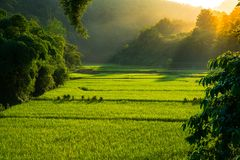 Sunlight shine behind Mountain valley and fog during natural win. Ter landscape in Nan, Thailand Stock Photography