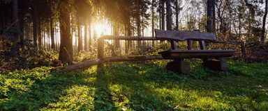 Bench on a hiking trail at sunset Stock Photo