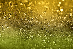 Sunlight Shining Through Droplets on a Web Royalty Free Stock Images
