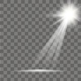 Sunlight special lens flare light effect on transparent background. Vector.  Stock Photos