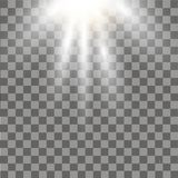 Sunlight special lens flare light effect on transparent background. Vector.  Stock Image