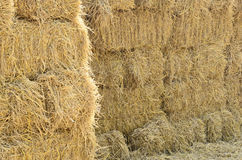Sunlight and straw wall Royalty Free Stock Image