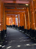 Sunlight through Torii Gates Royalty Free Stock Image