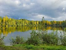 Sunlight on University Lake Landscape Anchorage Alaska Stock Image