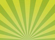 Sunlight wide abstract background. Green color burst background. Vector illustration. Sun beam ray sunburst pattern background. Summer day bright backdrop stock illustration