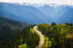 Sunlight upon winding road, Olympic National Park Stock Photography