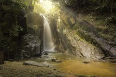 Sunlights forest thailand Royalty Free Stock Photography