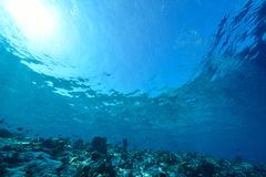 Sunlights von Underwater lizenzfreies stockbild