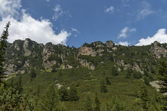 Sunlit верхнее горы перерастанное с coniferous лесом и glade на экологической прогулке к пику Maliovitza в горе Rila Стоковое Изображение