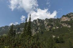 Sunlit верхнее горы перерастанное с coniferous лесом и glade на экологической прогулке к пику Maliovitza в горе Rila Стоковое фото RF
