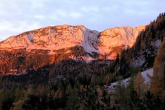 Sunlit горы в утре с деревьями лиственницы в фронте Стоковая Фотография