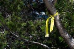 Sunlit желтая лента Стоковые Фотографии RF