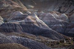 Sunlit неплодородные почвы на голубой мезе в покрашенном nea национального парка пустыни стоковое фото rf