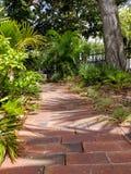Sunlit путь кирпича в тропическом саде стоковая фотография