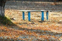 Sunlit старые голубые деревянная скамья и таблица на осени приставают парк к берегу день солнечный Стоковое фото RF