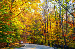 Sunlit autumn road. A small truck approaches on curvy road climbing through a sunlit autumn woods Royalty Free Stock Photography