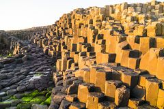 Free Sunlit Basalt Rock Formations At The Giant`s Causeway In Northern Ireland Royalty Free Stock Image - 161179756