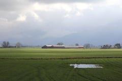 Sunlit Farm Landscape Royalty Free Stock Photos