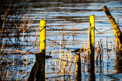 Sunlit fence posts in flood water Royalty Free Stock Photo