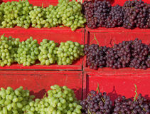 Sunlit grapes at the market. Royalty Free Stock Photo