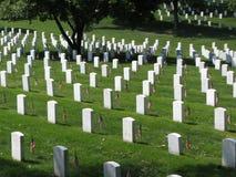 sunlit gravestones fotografering för bildbyråer