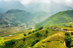 Sunlit green rice terraces at highlands. Sa Pa District, Vietnam Stock Photo