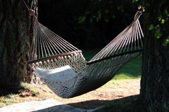 Sunlit Hammock Royalty Free Stock Images